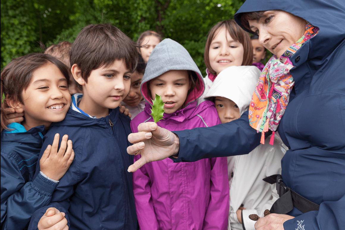 Enseignants : Préparez Vos Séjours éducatifs à Mandres-les-Roses !