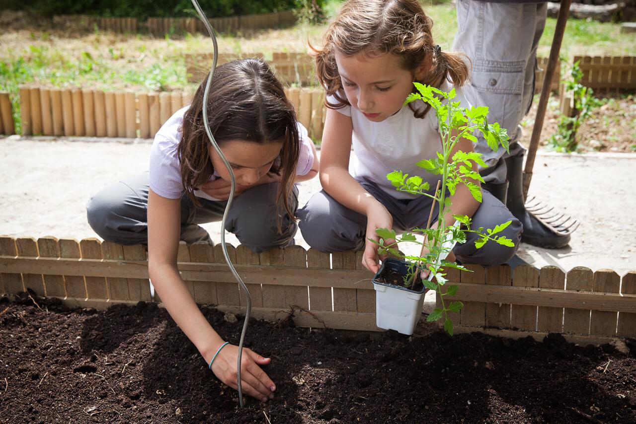 Jardin Pédagogique En Classe Découverte Par Les Pep 75 Mandres-les-Roses