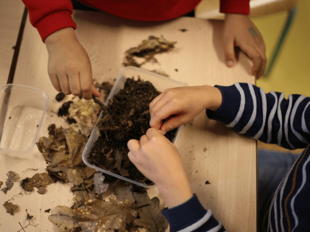 Centre PEP75 «Paris-Mandres» : La Nature S'invite Dans Les écoles !